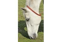 Collier anti mouches pour chevaux