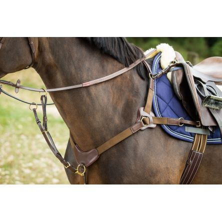 grande vente de liquidation styles de mode luxuriant dans la conception Collier de chasse 5 points HFI 2017 - Boutique Equitation