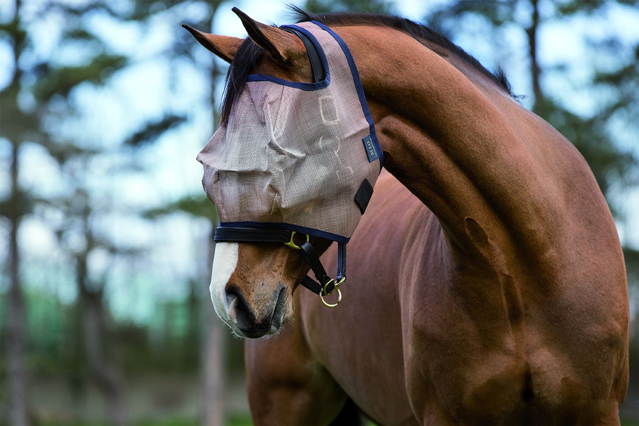 Amigo Mio Poney//Cheval Flymask sans oreilles-bronze marine